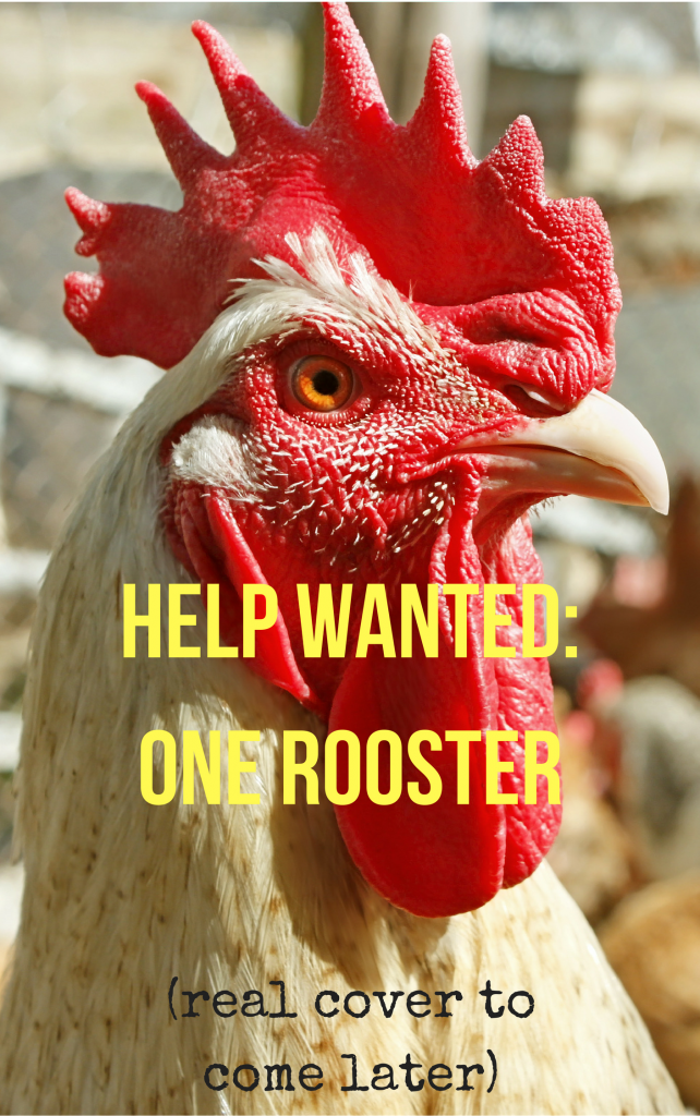 Book Cover: Help Wanted: One Rooster
